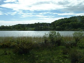 Hawes Water (Silverdale) Lake and SSSI in Lancashire, England