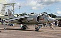 Hawker Kestrel (14375467605).jpg