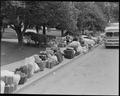 Hayward, California. Baggage of evacuees of Japanese ancestry stacked at public park as evacuation . . . - NARA - 537499.tif