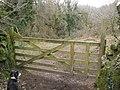 Heaven's Gate, near Pethybridge - geograph.org.uk - 1195095.jpg