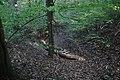 Heidenschloss-Weiherberg-DSC 6283.jpg