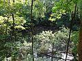 Heidesee Blauer See (2).jpg
