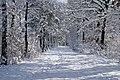 Heiligenbergsee 02-2013 - panoramio.jpg