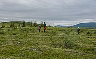 Hikers on tundra in Ivvavik National Park, YT.jpg