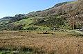 Hillside near Nant-y-gwyrddail - geograph.org.uk - 1032729.jpg