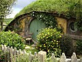 Hobbiton, The Shires, Middle-Earth, Matamata, New Zealand - panoramio (13).jpg