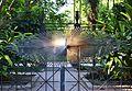 Homenatge a Cavanilles, Andreu Alfaro, jardí botànic de València.JPG