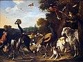 Hondecoeter Tiere v d Arche Noah@Herzog Anton Ulrich Museum.JPG