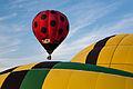 Hot air balloons in leon guanajuato mexico.jpg