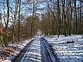 Housina, hřebenová cesta (02).jpg