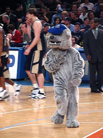 Jack the Bulldog - The costumed personification of Jack the Bulldog at a basketball game.