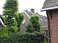 Huizen-schipperstraat-184536.jpg