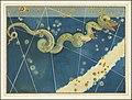 Hydra - Johann Bayer.jpg