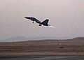 IAF Su-30MKI during Garuda exercise.jpg