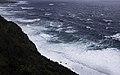 Ilha das Flores P5260097 (35199710073).jpg