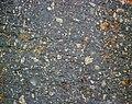 Impact breccia (Sandcherry Member, Onaping Formation, Paleoproterozoic, 1.85 Ga; High Falls roadcut, Sudbury Impact Structure, Ontario, Canada) 30 (46843307255).jpg