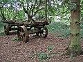 In Bannam's Wood - geograph.org.uk - 453152.jpg