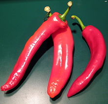 Italian sweet peppers.jpg