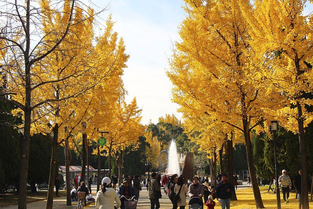 JP-Osaka-Osaka-Castle-Park-Morinomiya-Side-Entrance