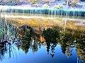 Jackson Lake (2971871715).jpg