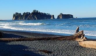 James Island (La Push, Washington) - James Islands seen from Rialto Beach