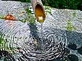 Japanese garden (14779546027).jpg