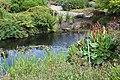 Jardin Botanique Royal Édimbourg 29.jpg
