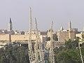 Jerusalem Drimia 791.jpg