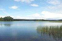 Jezioro Studzieniczne.JPG