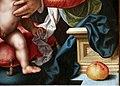 Joos van cleve, madonna col bambino, 1530-35 ca. 04 mela.jpg