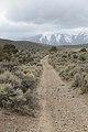 Jumbo Grade Trail - panoramio (45).jpg