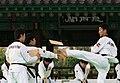 KOCIS Korea Taekwondo Namsan 07 (7628127668).jpg