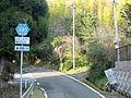 Kagoshima prefectural roads 395.JPG