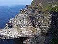 Kebble Bird Sanctuary, Rathlin Island, Co. Antrim - geograph.org.uk - 185508.jpg