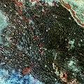 Khartoum, Sudan ESA350422.jpg