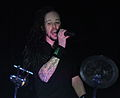 Korn exorcizes demons at Frequency Festival in Austria (7807378126).jpg