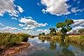 Kruger National Park Landscape 3.jpg
