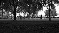 Kyrkogård (9255921357).jpg