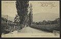 La Motte-Chalançon - Allée des peupliers (34439440151).jpg