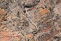 La Palma - El Paso - Caldera de Taburiente (Mirador del Roque de los Muchachos2) 02 ies.jpg