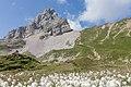 Lac Peyre (16546632047).jpg