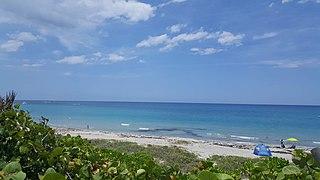 320px Ladder 38 %40 Dog Beach in Jupiter%2C Florida