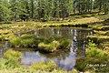 Lago della capra - panoramio.jpg