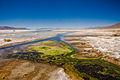 Laguna Blanca, Bolivia (2098873574).jpg