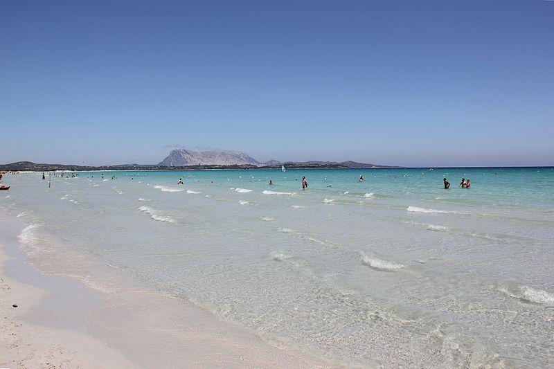 File:Laika ac Sardinia (9490410584).jpg