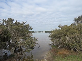 Lake Coogee Lake in Perth, Western Australia