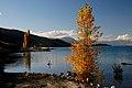 Lake Tekapo New Zealand. (12381104494).jpg