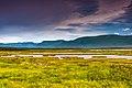 Landscapes Newfoundland (39555134780).jpg