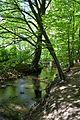 Landschaftsschutzgebiet Gütersloh - Isselhorst - An der Lutter (10).jpg