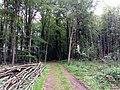 Landschaftsschutzgebiet Strothheide Melle Datei 25.jpg